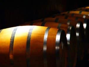 Cruisin the Tropics in the Finger Lakes Wine Region of NY 5