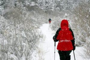 Red Jacket Snowshoe - Dreamstime