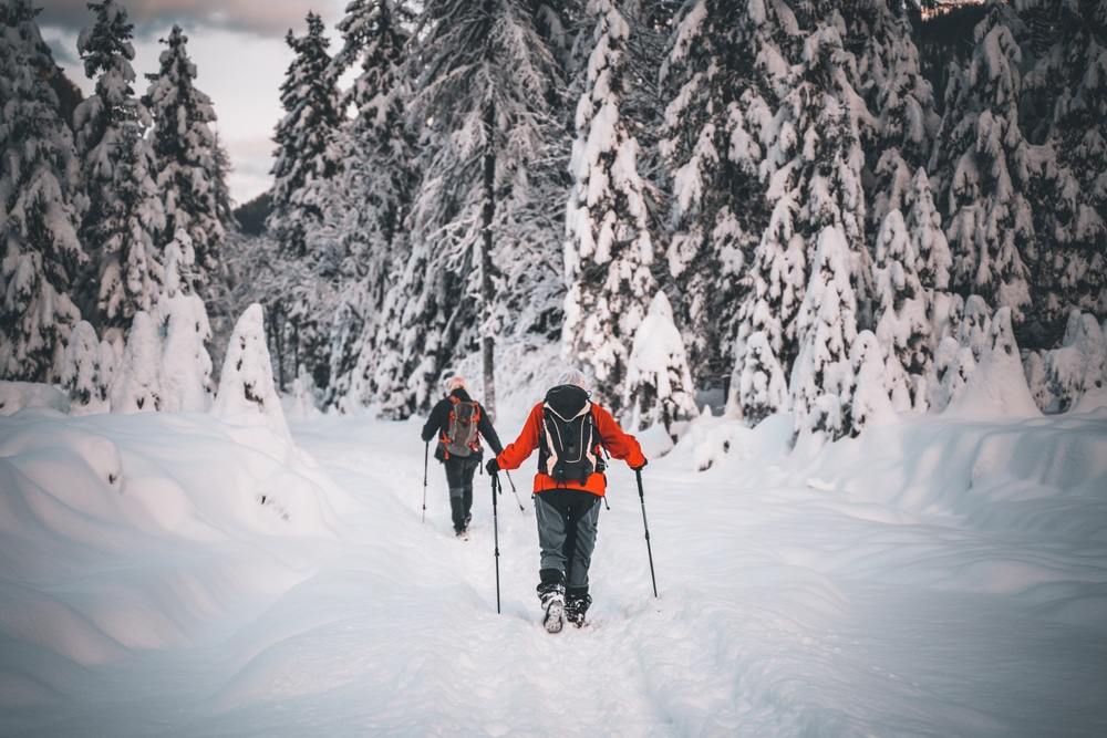 snowshoeing in the Finger Lakes National Forest